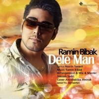 Ramin Bibak - Dele Man