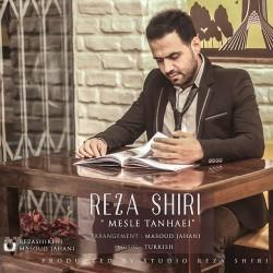 Reza Shiri – Mesle Tanhaei