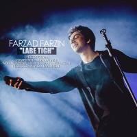 Farzad Farzin - Labe Tigh