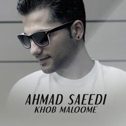 Ahmad Saeedi – Khob Maloome