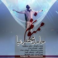 Hamed Mahzarnia - Mamnonam ( New Version )