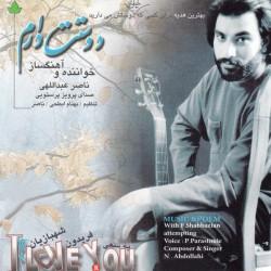 Naser Abdollahi – Doostat Daram