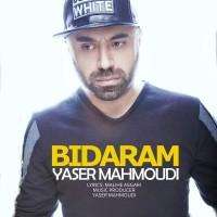 Yaser Mahmoudi - Bidaram