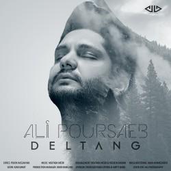 Ali Poursaeb – Deltang