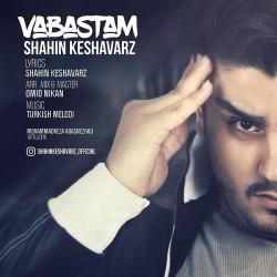 Shahin Keshavarz – Vabastam