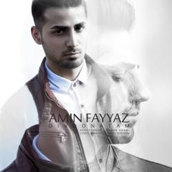 Amin Fayyaz – Divoonatam