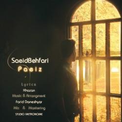 Saeid Behfari – Paeiz