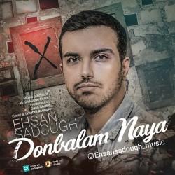 Ehsan Sadough – Donbalam Naya