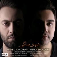 Hamed Mahzarnia & Mehdi Shokoohi - Shabhaye Deltangi