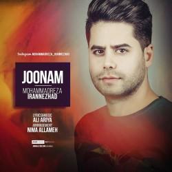 Mohammadreza Irannezhad – Joonam