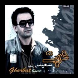 Saeid Poursaeid - Ghorbat