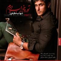 Shahab Mozaffari - Toro Khab Didam