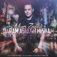 Naser Zeynali - Daram Ashegh Misham