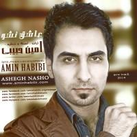Amin Habibi - Ashegh Nasho