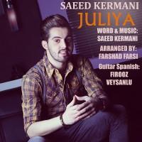 Saeed Kermani - Juliya