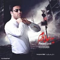 Pouya Bayati - Ye Hali Daram