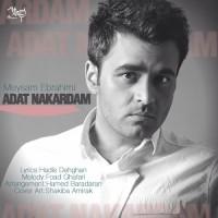 Meysam Ebrahimi - Adat Nakardam