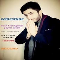 Peyman Ashrafi - Zemestoone