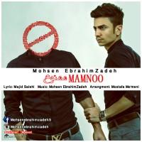 Mohsen Ebrahimzadeh - Mamnoo