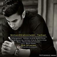 Mohsen Ebrahimzadeh - Tanhaei