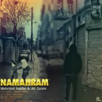 Mahan Abedi Ft Mehrshid Habibi & Ali Salimi - Namahram