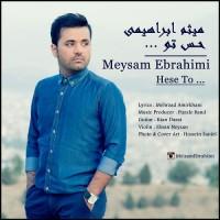 Meysam Ebrahimi - Hesse To