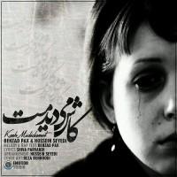 Hossein Seyedi Ft Behzad Pax - Kash Mididamet