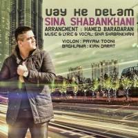 Sina Shabankhani - Vay Ke Delam