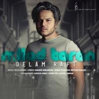 Milad Baran - Delam Raft
