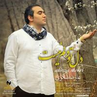 Alireza Shokri - Del To Delam Nist