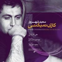 Saeid Shahrouz - Kari Nemikoni