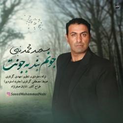 Saeed Mohammad Nabi – Joonam Bande Be Joonet