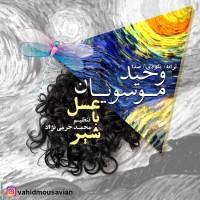 Vahid Mousavian - Asal Ba Shir