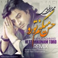 Mehdi Yaghmaei - Hess Mikonam Toro ( Remix )