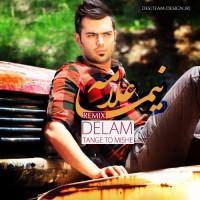 Nima Allameh - Delam Tange To Mishe ( Remix )