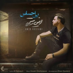 Amin Rostami – Bi Ehsas
