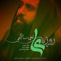 Roozbeh Nematollahi - Ali