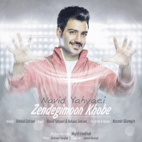 Navid Yahyaei - Zendegimoon Khoobe