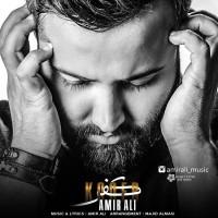 Amir Ali - Kofr