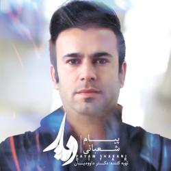 Payam Shabani - Diar