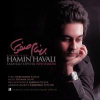 Behnam Safavi - Hamin Havali ( Remix )