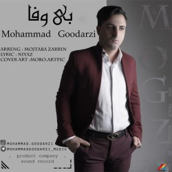Mohammad Goodarzi – Bivafa