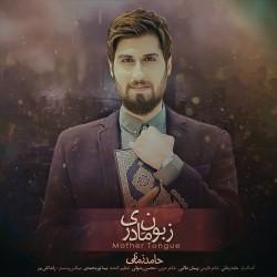 Hamed Zamani – Zaboone Madari