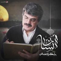 Babak Radmanesh - Ensan