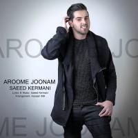Saeed Kermani - Aroome Joonam