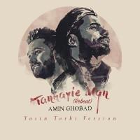 Amin Ghobad - Tanhaeiye Man ( Yasin Torki Remix )