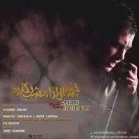 Saeid Shahrouz - Chand Saal Az Emshab Begzare ( Remix )