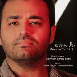 Meysam Ebrahimi - Bi Dalil