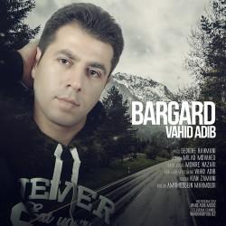 Vahid Adib – Bargard