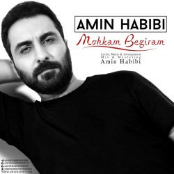 Amin Habibi - Mohkam Begiram